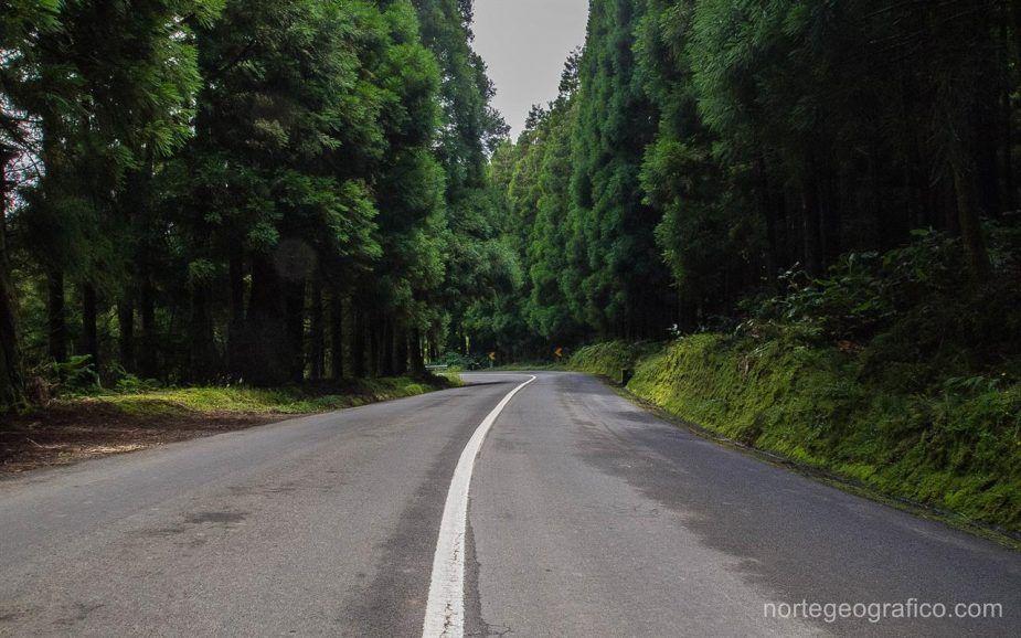 Azores, Sao Miguel. Día 6: Vuelta a Casa